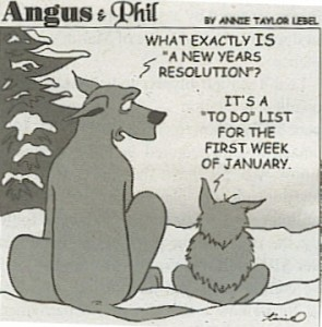 new-years-jan-todo-comic-295x300