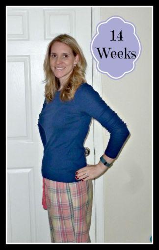 14 Weeks 2