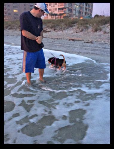 Beach Sophie 2